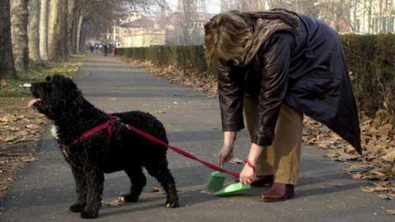 signora-paletta-per-cani-npoli