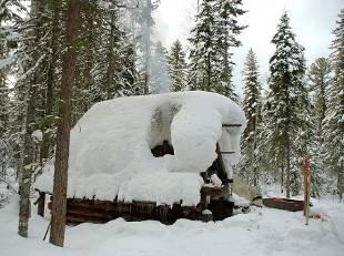 casa-neve-foresta